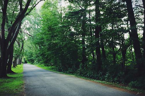 Simple road
