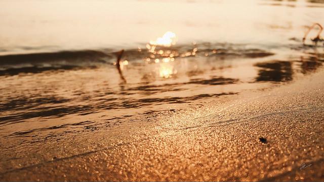 Fair haven shore
